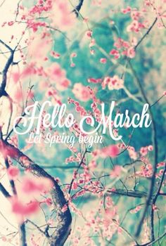 Here are 120 Hello March Quotes and Sayings to enjoy for the new month. March means spring, easter and warm weather. So we hope you enjoy these quotes and share with others! Seasons Months, Days And Months, Months In A Year, 12 Months, New Month Quotes, Monthly Quotes, Hello March Quotes, Neuer Monat, New Month Wishes