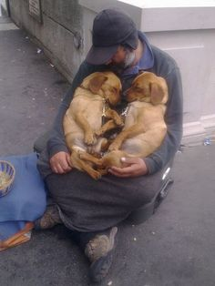 A Homeless Man With His Dogs