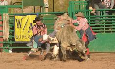 W/A Rodeo's Put On An Incredible Show At The Wickenburg Gold Rush Days Senior Pro Rodeo - COWGIRL Magazine