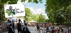 Zum Flaucher in München Thalkirchen: Restaurant und Biergarten mit Tradition- Zum Flaucher