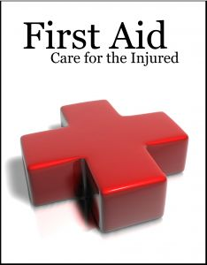 Free Downloadable First Aid Manual