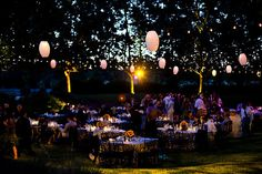 Lanterns, damask & sunflower reception