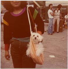 snapped at the westheimer street festival, 1979