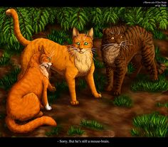 Squirrelpaw, Firestar and Brambleclaw by Vialir on deviantART