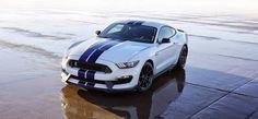 Monkey Motor: El primer Ford Mustang Shelby GT 350 será subastad...