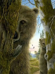 by Robert Bissell > this is what the bears do in my forest backyard!