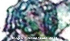 piedrasdeica.net - LA GLÁNDULA PINEAL Y LAS PIEDRAS CRÍSTICAS