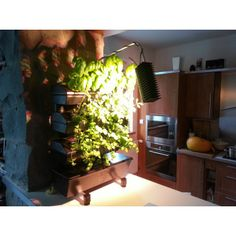 vertical hydrophonc system with LED grow light. Led Grow Lights, Mini S, Light Fixture