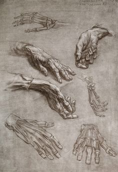 O MUNDO DO ARTISTA: Desenho e Pinturas da Academia de São Petersburgo