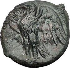 SYRACUSE in SICILY 287BC Zeus Eagle Rare R1 HIKETAS Ancient Greek Coin i55572