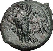 SYRACUSE in SICILY 287BC Zeus Eagle Rare R1 HIKETAS Ancient Greek Coin i55572