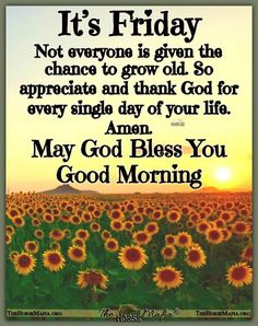 Good Morning Wednesday, Good Morning Prayer, Morning Prayers, Good Morning Wishes, Good Morning Quotes, Friday Morning, New Month Quotes, Its Friday Quotes, Friday Humor