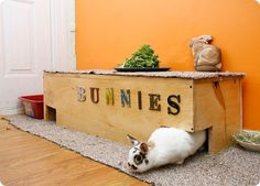 Our bunny died last year. I wish we'd thought of a cool den like this.