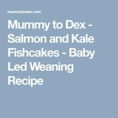 Mummy to Dex - Salmon and Kale Fishcakes - Baby Led Weaning Recipe