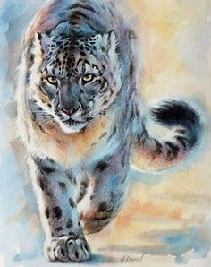 OUT OF NOWHERE - Snow Leopard, Christine Karron, pencil, colored pencil, watercolor, acrylic 8x10 inches