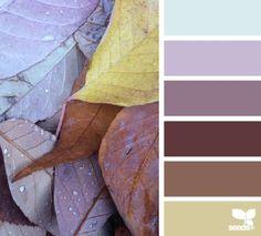 autumn dew (via Bloglovin.com )