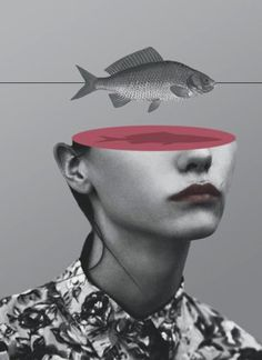 Some surreal photo collages and mixed media artworks by Matthieu Bourel. Matthieu Bourel is a French artist currently living and working in Berlin, Collage Foto, Art Du Collage, Surreal Collage, Surreal Photos, Mixed Media Collage, Digital Collage, Photo Collages, Fish Collage, Paper Collages