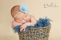 Blue Curly Alpaca Faux Flokati Fur Newborn Photography Prop | Beautiful Photo Props