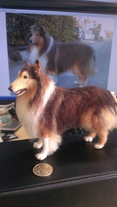 Needle felted super realistic Rough Collie Gionzzino