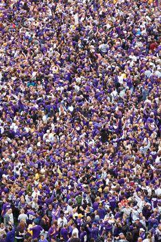 Real Dawgs wear purple! #youW  Photo by Tara Brown