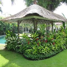 Get suggestions for taking pleasure in a stunning Florida Gardening, landscape, or front yard. Our specialists inform you all you need to really florida gardening Florida Landscaping, Florida Gardening, Tropical Landscaping, Landscaping Company, Garden Landscaping, Landscaping Ideas, Country Landscaping, Bali Garden, Balinese Garden