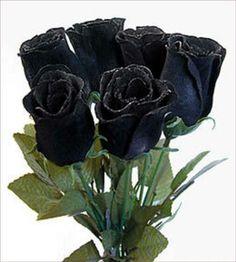 132 najlepších obrázkov z nástenky black  4a523ae266
