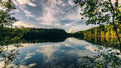 Nature reflection - null