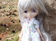 ઇઉ .: Eu keroooo !!! Bonecas Pullip Dolls