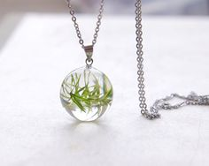 Hey, I found this really awesome Etsy listing at https://www.etsy.com/listing/177999348/real-plant-necklace-green-pendant-gift