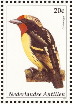 Black-spotted Barbet stamps - mainly images - gallery format