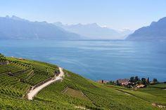 A deux pas de Lausanne, les vignobles en terrasses de Lavaux surplombant le lac Léman, une ballade extraordinaire en Suisse et à…