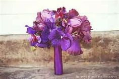 if u go on this link and scroll down and go through the pictures theyre really pretty>>>http://www.bing.com/images/search?q=purple+orchid+wedding=detail=39B2B309588E32581794818C869B2C62F9CB76D3=115