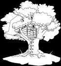 magic treehouse coloring pages