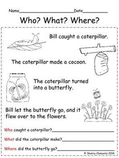 English worksheets: Who - What - Where - When