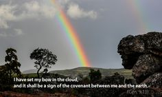 M'Cheyne Bible Reading Plan Meditation for Genesis 9–10: The Noachian covenant, animals, capital punishment, the rainbow, the preservation of life.
