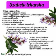 Szałwia Slow Food, Natural Treatments, For Your Health, Healthy Tips, New Recipes, Herbalism, Life Hacks, Flora, Health Fitness