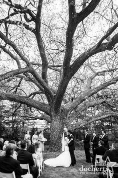 Aldie Mansion Wedding Pictures | lindsaydocherty.com | Doylestown wedding photographer