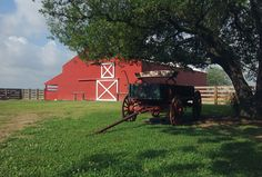 Beautiful spring day at the Red Barn in Winnie, Texas
