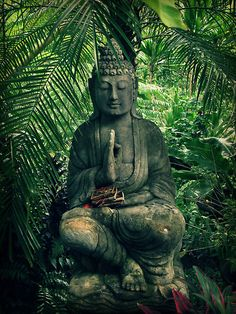 """This month is all about getting into the """"zen zone"""" for me. Bring on nature walks, yoga, meditation, cleanses and tea. Lotus Buddha, Art Buddha, Buddha Statues, Buddha Buddhism, Buddha Quote, Zen Meditation, Garden Statues, Tibet, Ganesha"""
