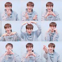 Chanyeol Cute, Park Chanyeol Exo, Baekhyun Chanyeol, Chansoo, Chanbaek, Tiger Face, Exo Ot12, Exo Memes, Boyfriend Material