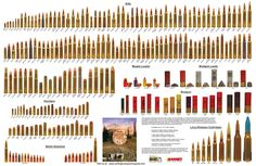 Ammo and Gun Collector: American Standard - Bullet Poster Rifle and Handgun Cartridges