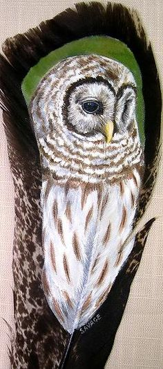 Painted Owl by Gail Savage Feather Painting, Feather Art, Feather Tattoos, Bird Feathers, Painted Feathers, Owl Art, Bird Art, Native Art, Native American Art