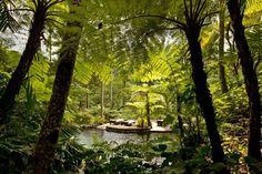 Como Shambala Estate - Bali