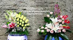 Rangkaian bunga pelantikan pejabat negara bisa anda pesan langsung melalui Florist Kencana untuk dikirimkan kepada pejabat baru di wilayah K...
