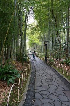 桂橋と楓橋。【伊豆旅行】|★カメラのキタムラ公式ブログ★