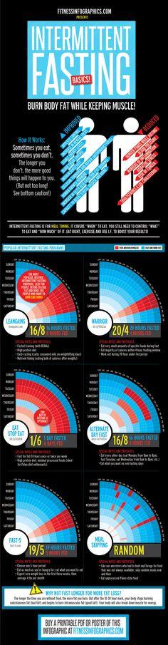 Intermittent Fasting Basics Infographic