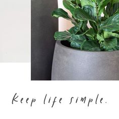Keep. Life. Simple. FeatherStone large lightweight durable planters.