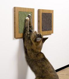 kitty scratching art