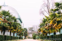 Jardin des Seres d'Auteuil #iheartparisfr #paris #parisphotographer #photographerinparis #parisjetaime #photoshootinparis #photosessioninparis #parisphotoshoot #parisphotosession #pariselopement #parisengagement #parissurpriseproposal #parisproposal #parisfrance #bestparisphotographer #weddinginparis #parisweddingphotographer #weddingphotographerparis