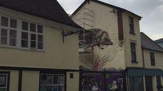 Hedgehog mural in Ipswich